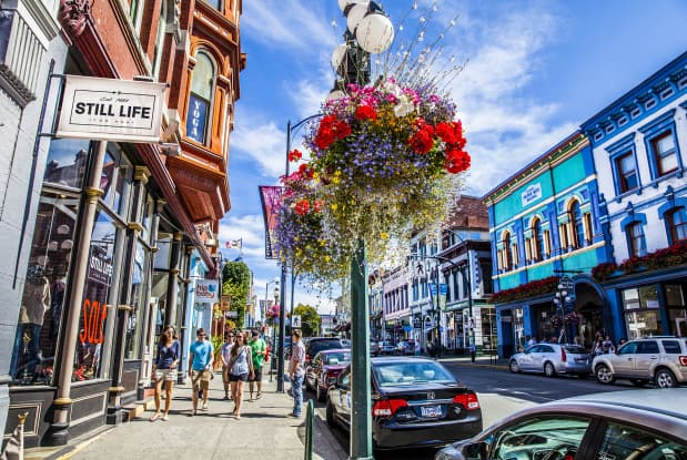 Hanging-Baskets-Victoria-BC-That-Girl-in-Victoria (5)